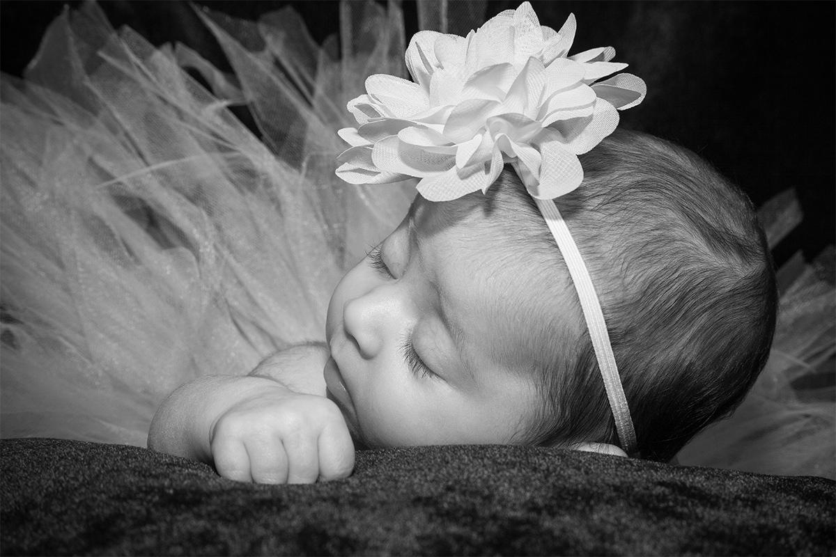 Newborn Photography Monmouth