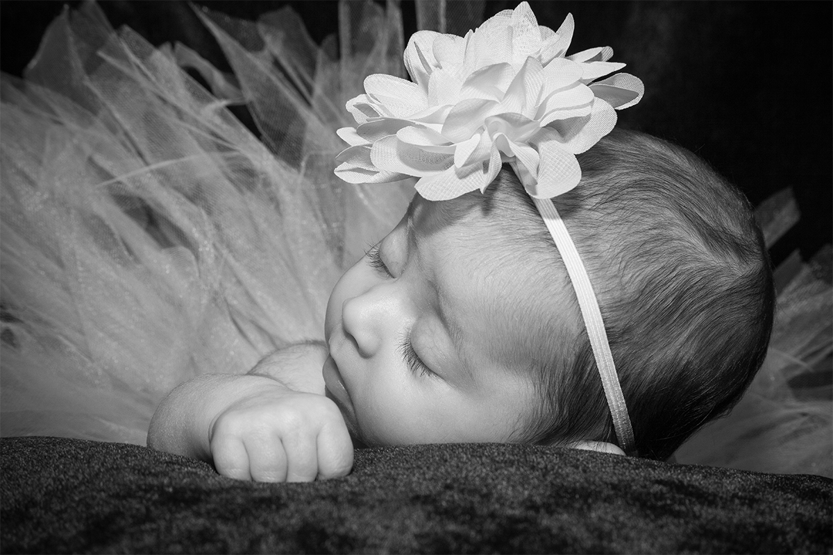 Newborn Photography Monmouth