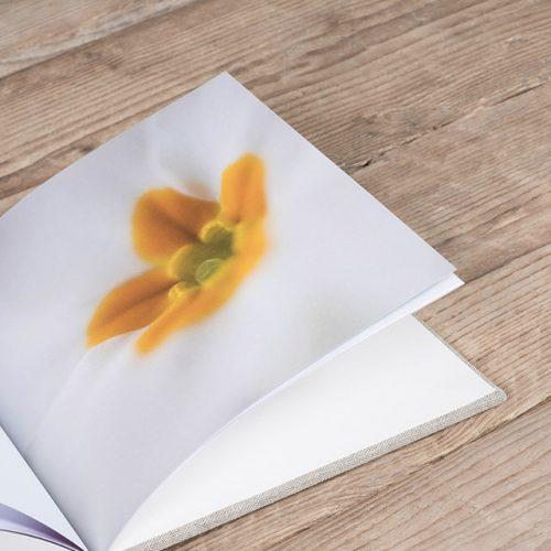 Usk Fine Art Photo Book